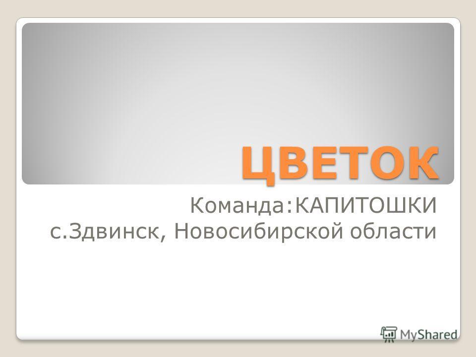 ЦВЕТОК Команда:КАПИТОШКИ с.Здвинск, Новосибирской области