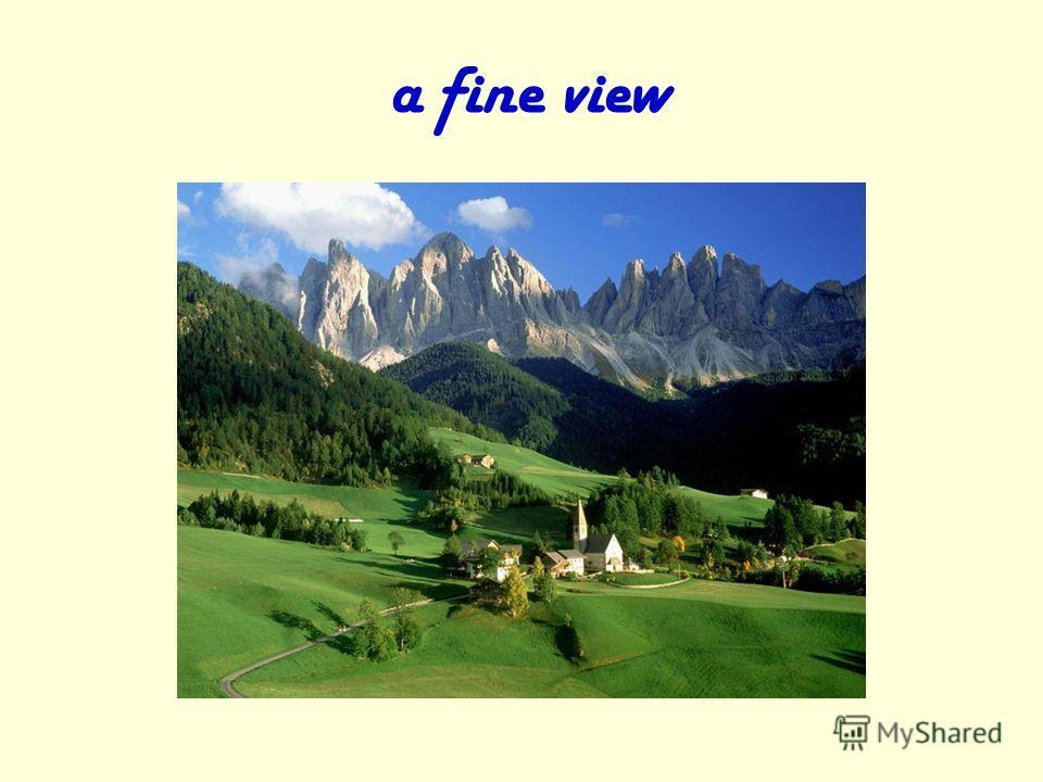 a fine view