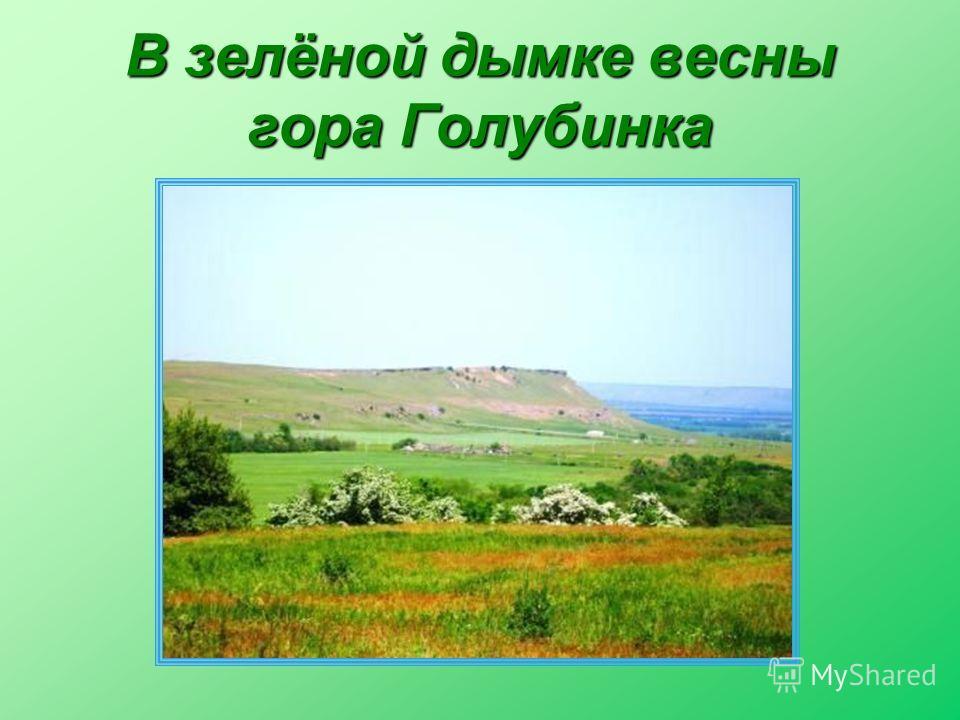 В зелёной дымке весны гора Голубинка