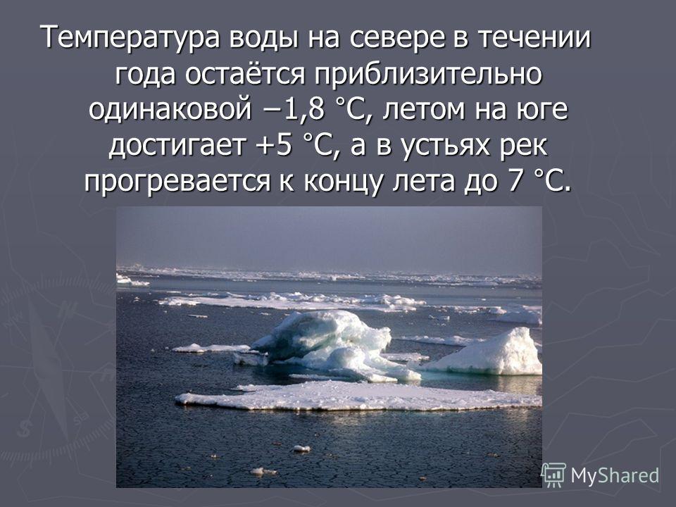Температура воды на севере в течении года остаётся приблизительно одинаковой 1,8 °C, летом на юге достигает +5 °C, а в устьях рек прогревается к концу лета до 7 °C.