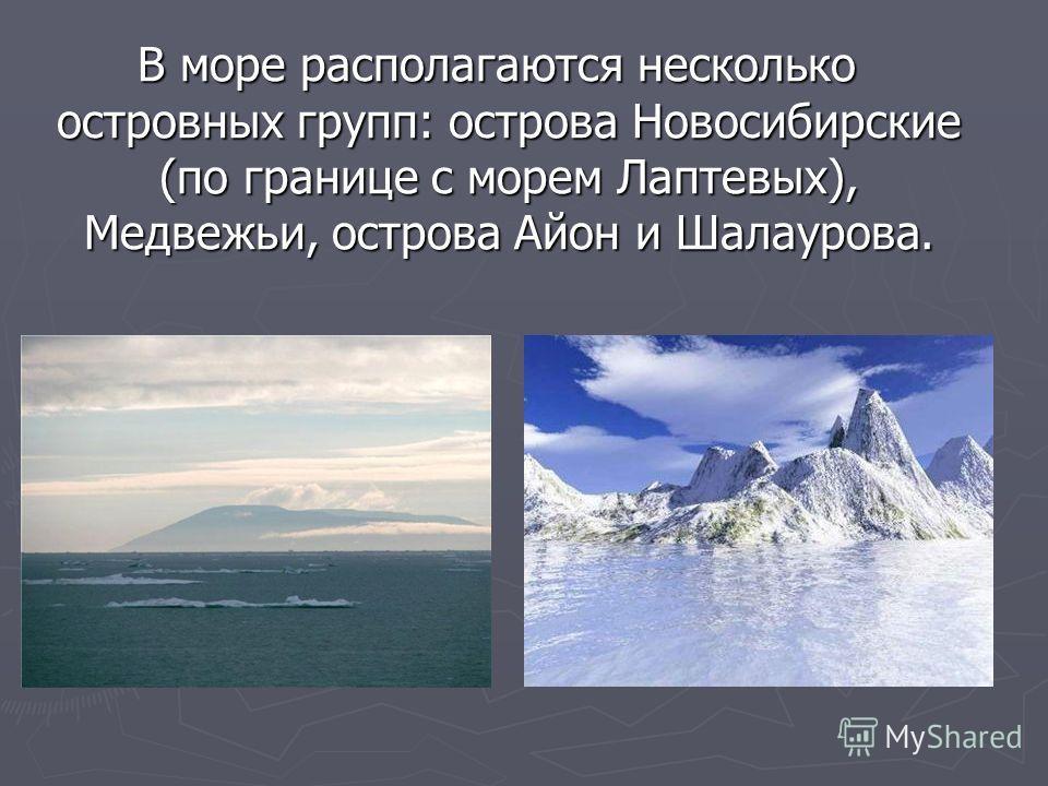 В море располагаются несколько островных групп: острова Новосибирские (по границе с морем Лаптевых), Медвежьи, острова Айон и Шалаурова. В море располагаются несколько островных групп: острова Новосибирские (по границе с морем Лаптевых), Медвежьи, ос