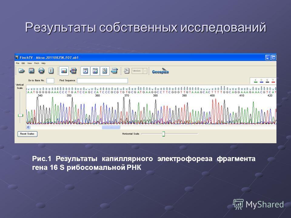 Результаты собственных исследований Рис.1 Результаты капиллярного электрофореза фрагмента гена 16 S рибосомальной РНК