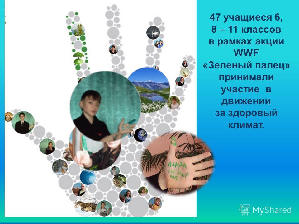 47 учащиеся 6, 8 – 11 классов в рамках акции WWF «Зеленый палец» принимали участие в движении за здоровый климат.