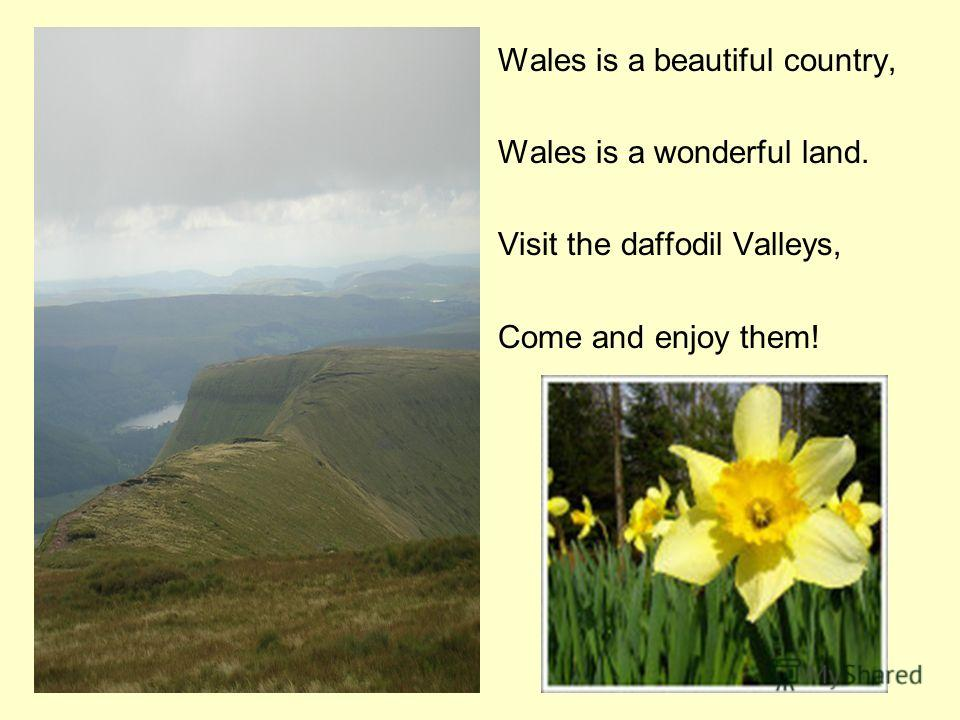 Wales is a beautiful country, Wales is a wonderful land. Visit the daffodil Valleys, Come and enjoy them!