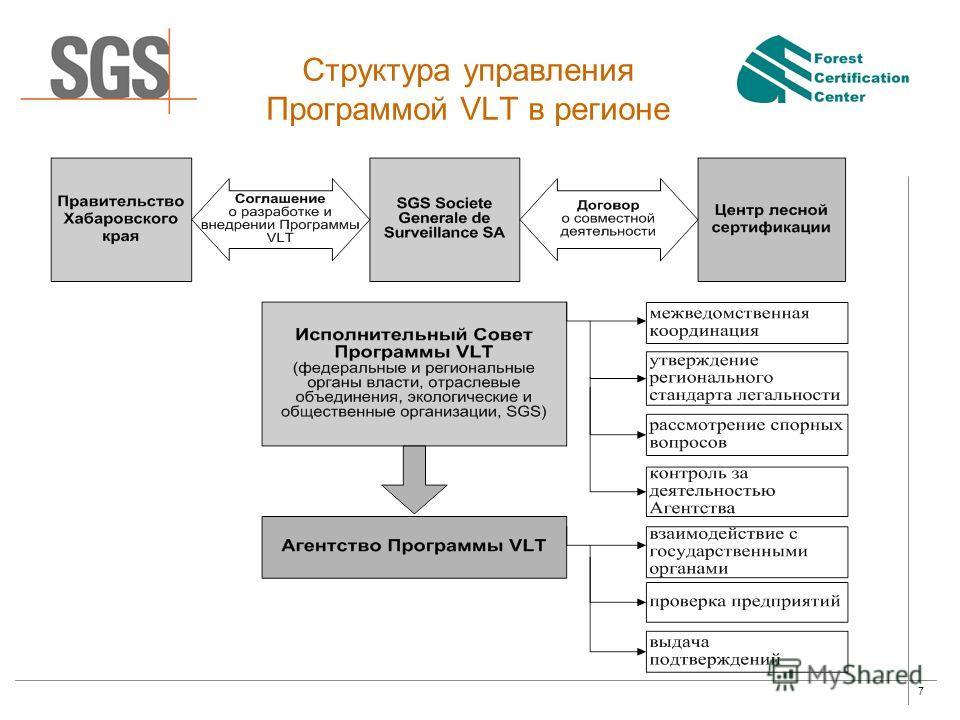 7 Структура управления Программой VLT в регионе