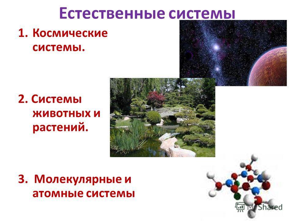 Естественные системы 1.Космические системы. 2. Системы животных и растений. 3. Молекулярные и атомные системы