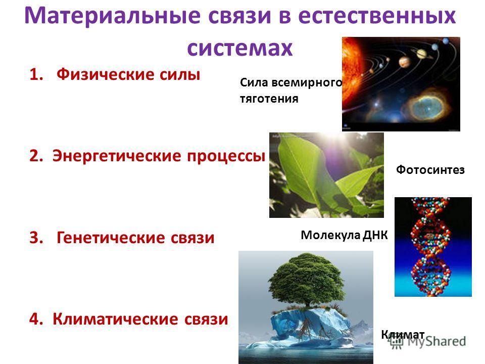 Материальные связи в естественных системах 1.Физические силы 2. Энергетические процессы 3.Генетические связи 4. Климатические связи Фотосинтез Сила всемирного тяготения Молекула ДНК Климат