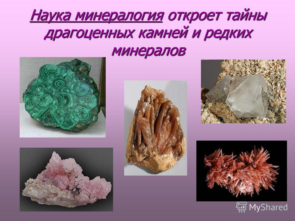 Наука минералогия откроет тайны драгоценных камней и редких минералов