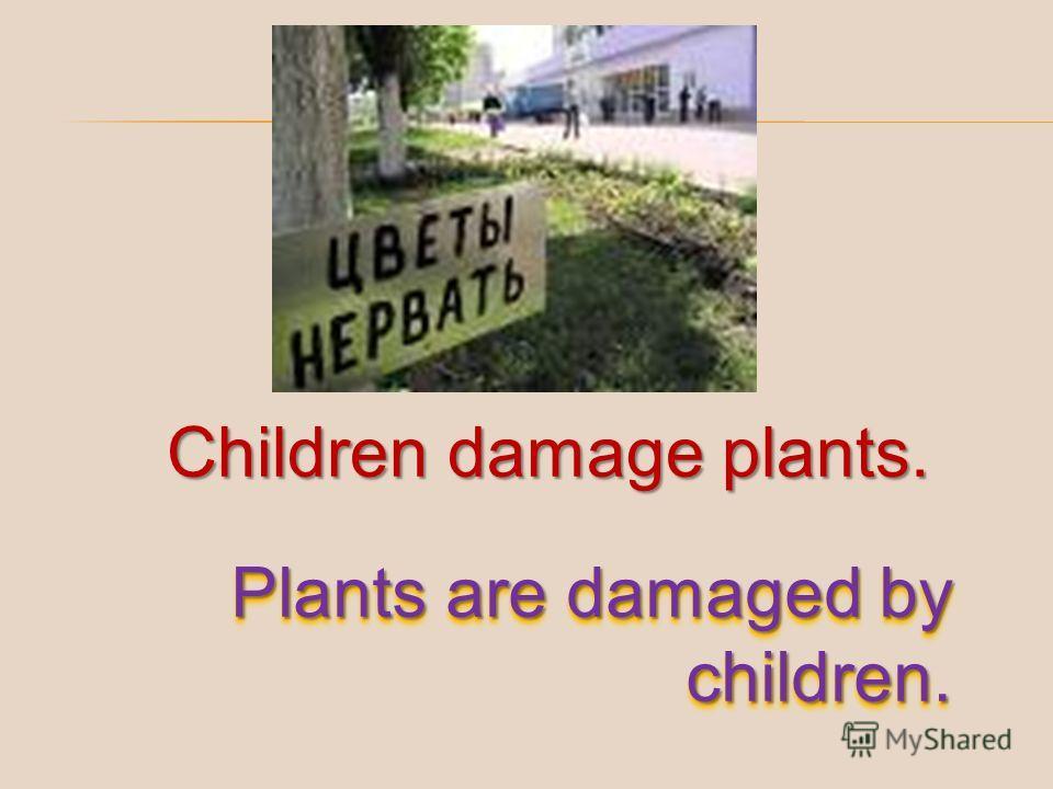 Children damage plants. Plants are damaged by children.
