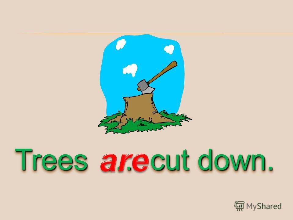 Trees … cut down.