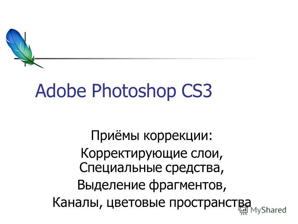 Adobe Photoshop CS3 Приёмы коррекции: Корректирующие слои, Специальные средства, Выделение фрагментов, Каналы, цветовые пространства