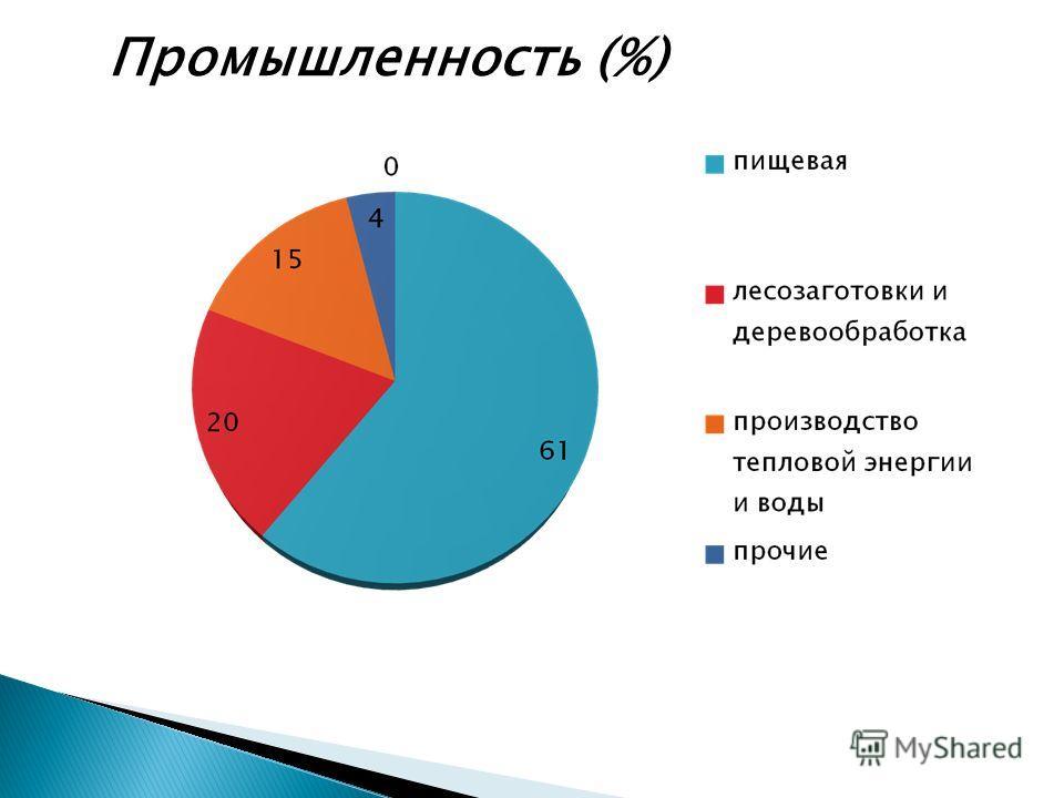 16 Промышленность (%)