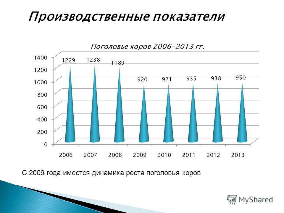 8 Производственные показатели С 2009 года имеется динамика роста поголовья коров