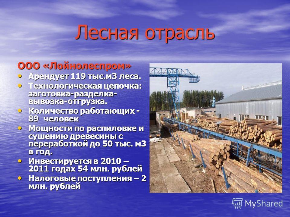 Лесная отрасль ООО «Лойнолеспром» Арендует 119 тыс.м3 леса. Арендует 119 тыс.м3 леса. Технологическая цепочка: заготовка-разделка- вывозка-отгрузка. Технологическая цепочка: заготовка-разделка- вывозка-отгрузка. Количество работающих - 89 человек Кол