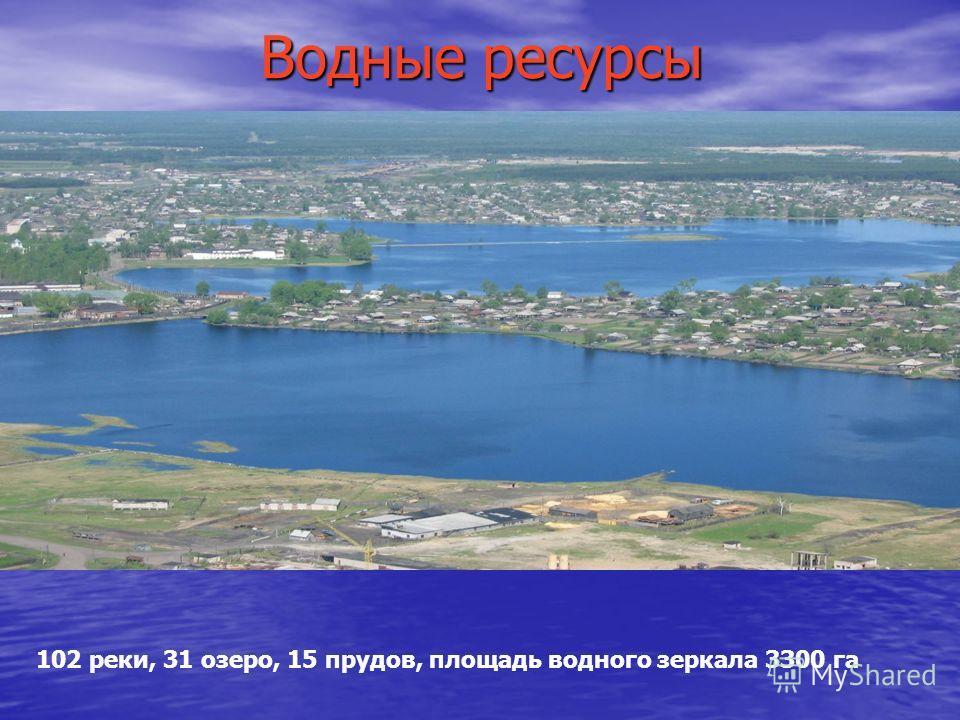 Водные ресурсы 102 реки, 31 озеро, 15 прудов, площадь водного зеркала 3300 га