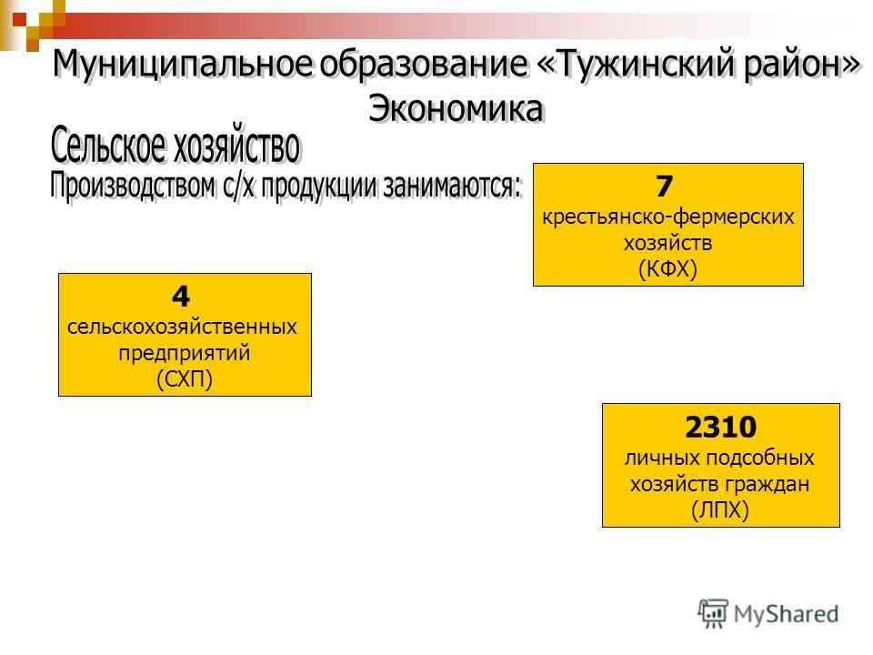 4 сельскохозяйственных предприятий (СХП) 7 крестьянско-фермерских хозяйств (КФХ) 2310 личных подсобных хозяйств граждан (ЛПХ)