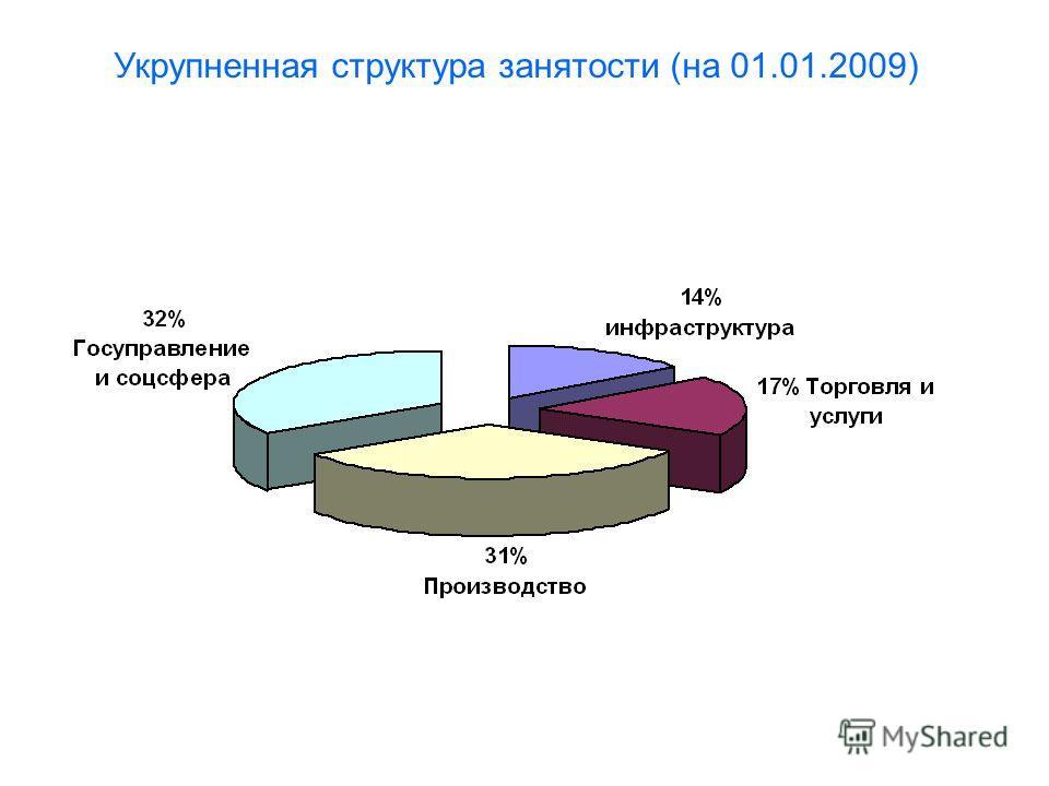 Укрупненная структура занятости (на 01.01.2009)