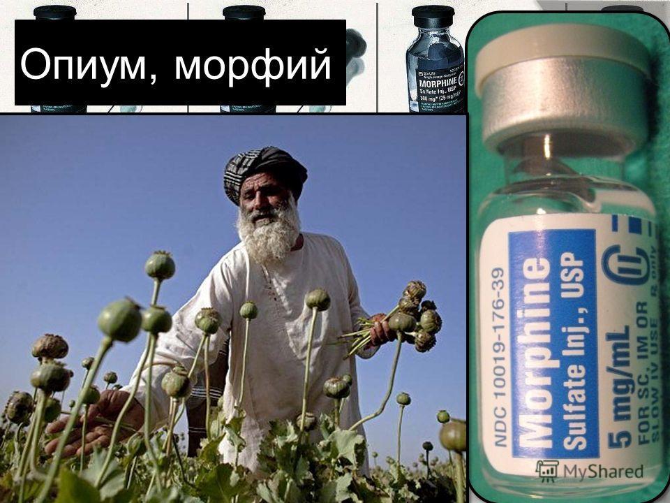 Опиум, морфий Опиум-семейство маковых, а морфий одно из составляющих опиума. Он в широких размерах употребляется врачами старой школы в виде подкожных вспрыскиваний для облегчения боли. Они действуют на кровообращение с наклонностью производить нарко