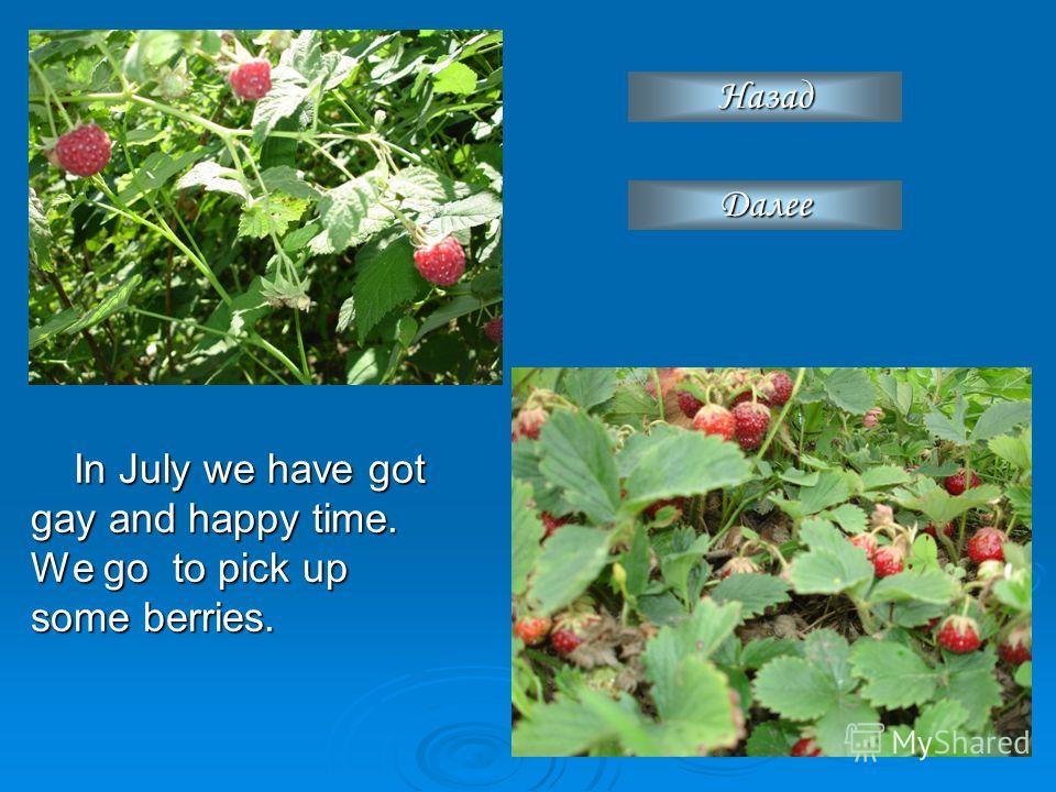 In July we have got gay and happy time. We go to pick up some berries. Назад Далее