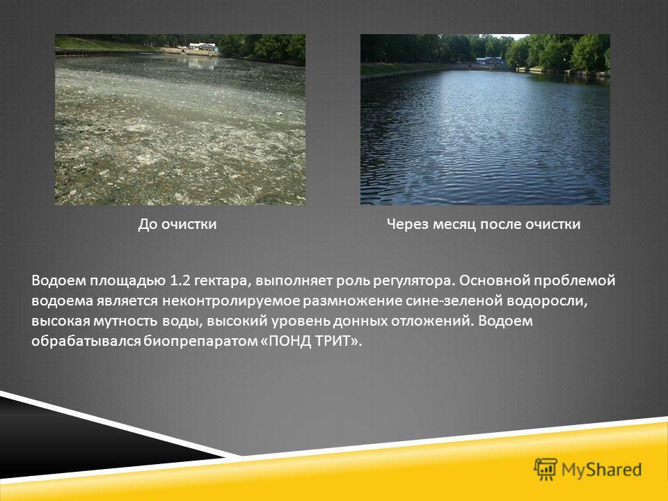До очистки Через месяц после очистки Водоем площадью 1.2 гектара, выполняет роль регулятора. Основной проблемой водоема является неконтролируемое размножение сине - зеленой водоросли, высокая мутность воды, высокий уровень донных отложений. Водоем об