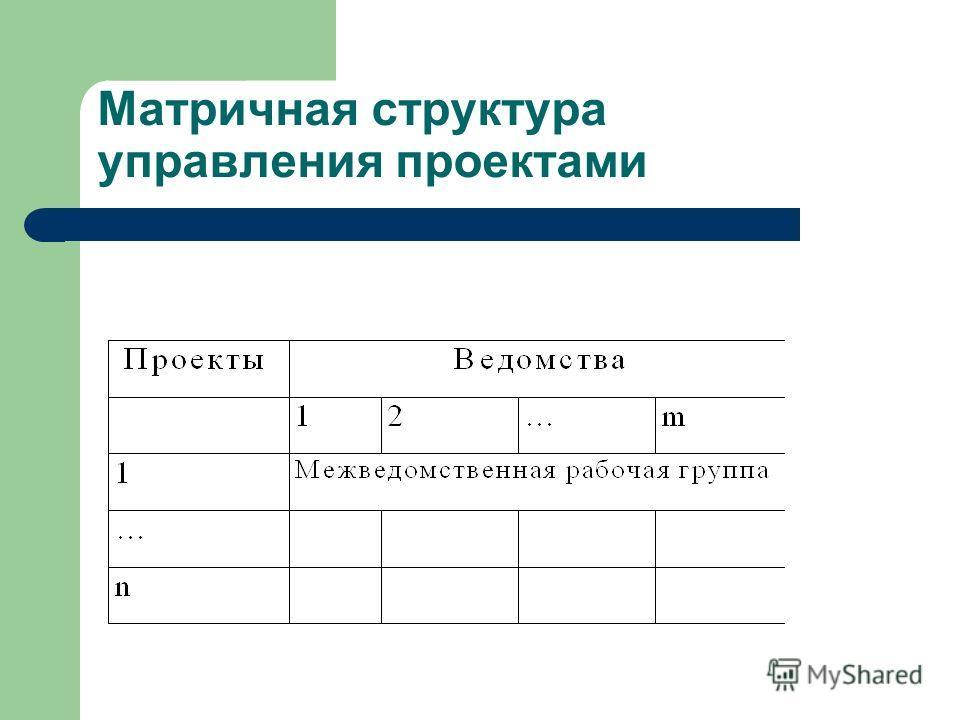 Матричная структура управления проектами