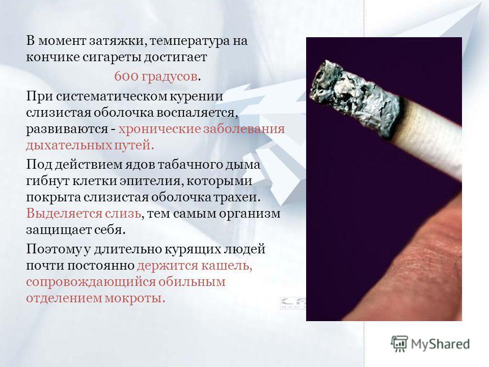 В момент затяжки, температура на кончике сигареты достигает 600 градусов. При систематическом курении слизистая оболочка воспаляется, развиваются - хронические заболевания дыхательных путей. Под действием ядов табачного дыма гибнут клетки эпителия, к