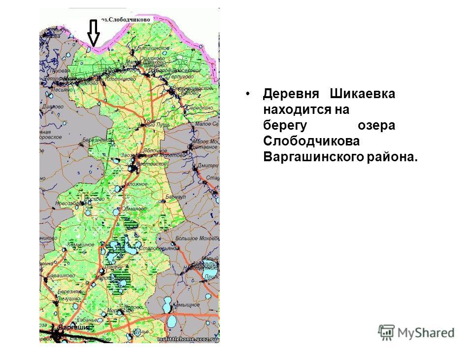 Деревня Шикаевка находится на берегу озера Слободчикова Варгашинского района.