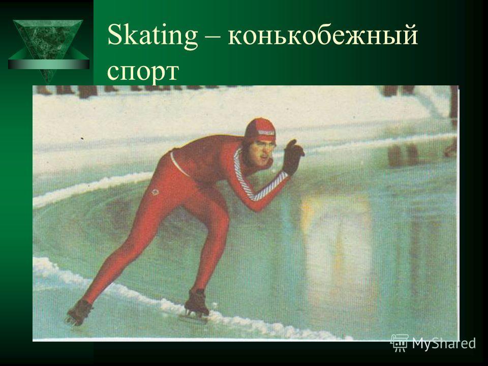 Skating – конькобежный спорт