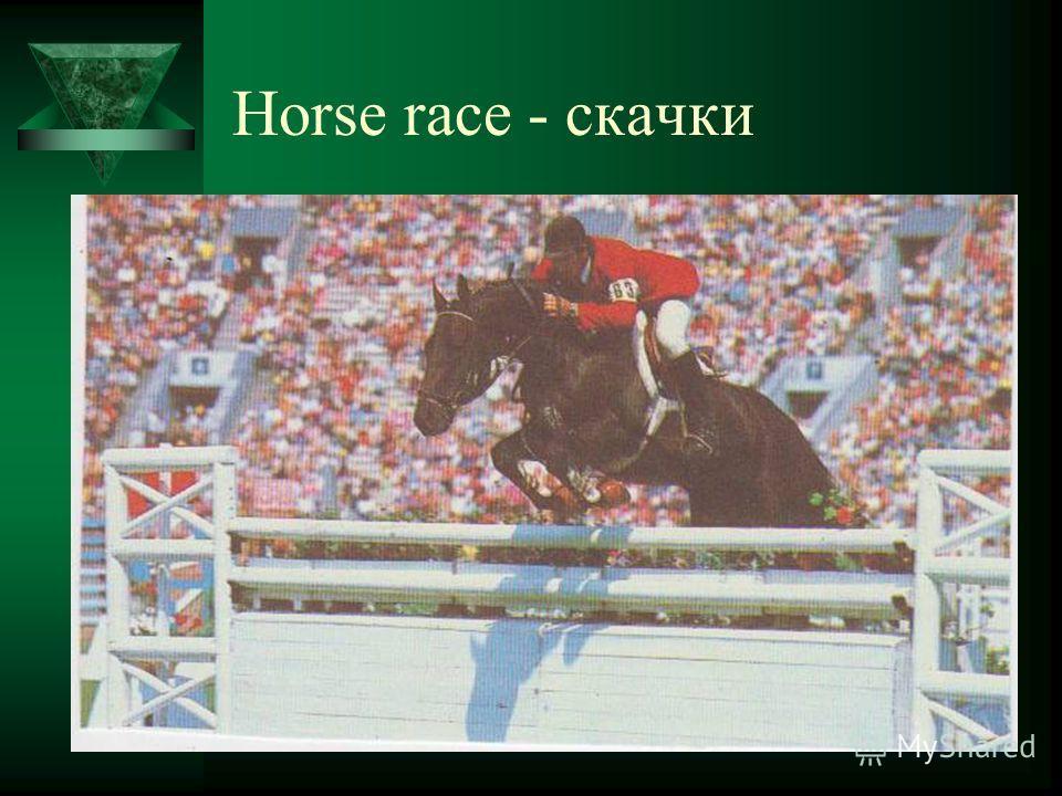 Horse race - скачки