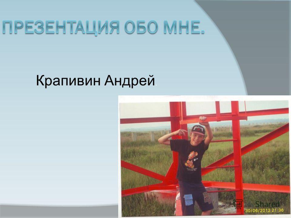 Крапивин Андрей.