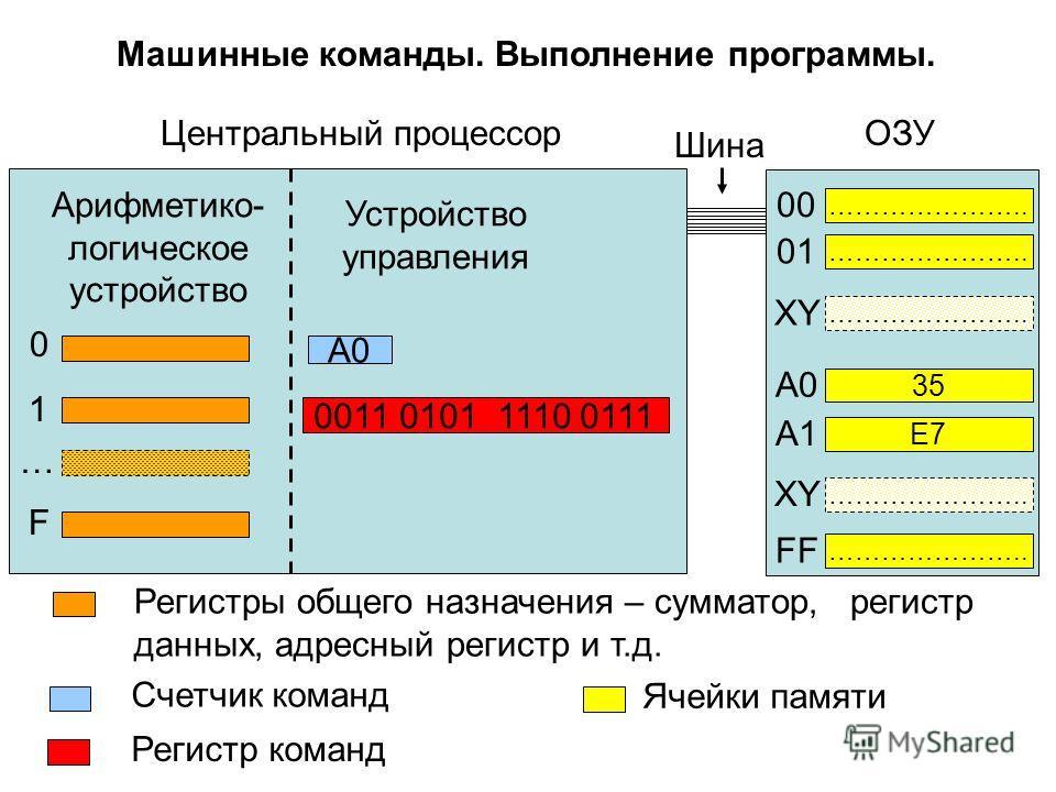 Регистры общего назначения – сумматор, регистр данных, адресный регистр и т.д. Арифметико- логическое устройство Устройство управления 0011 0101 1110 0111 A0 Центральный процессор ………………….. 35 ………………….. E7 ………………….. 00 01 XY A0A0 A1 FF Счетчик команд