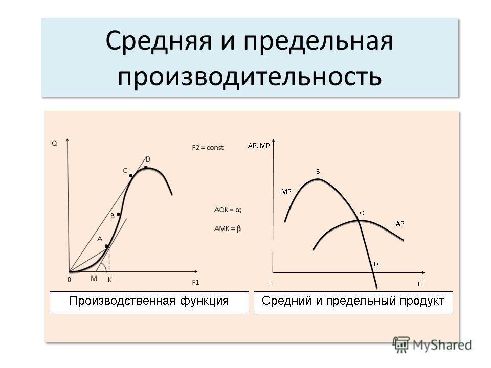 Средняя и предельная производительность