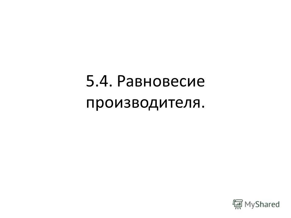 5.4. Равновесие производителя.