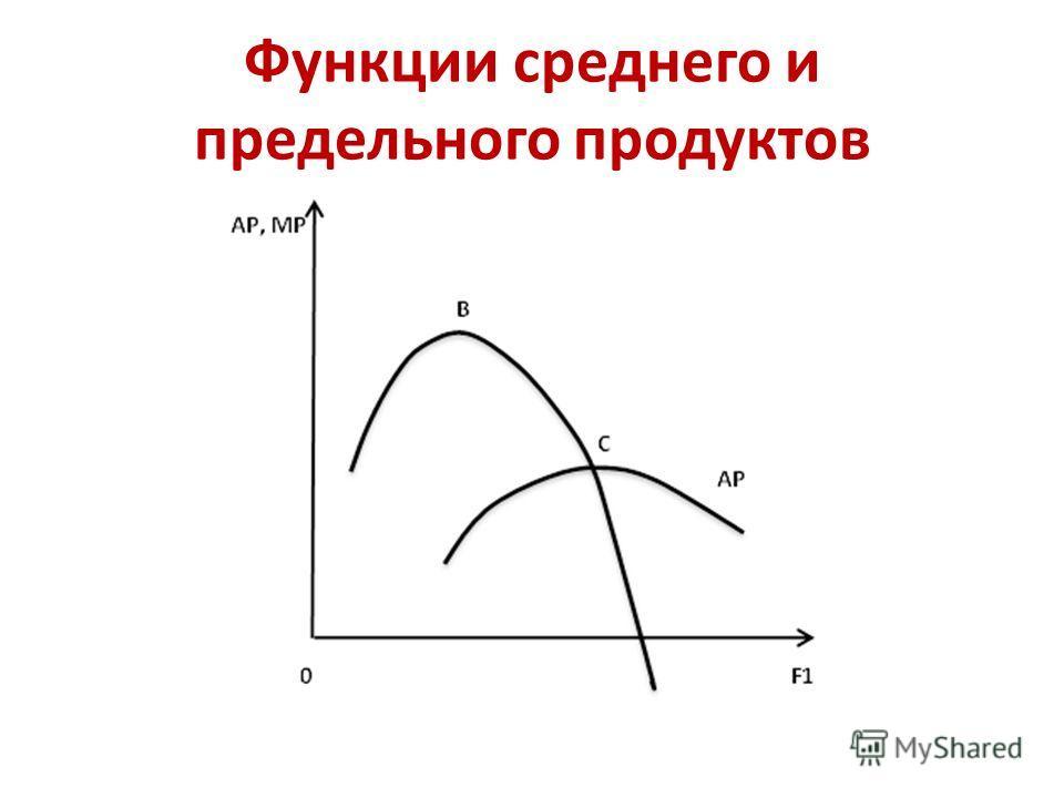 Функции среднего и предельного продуктов