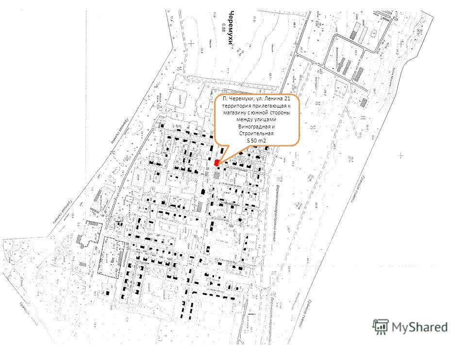П. Черемухи, ул. Ленина 21 территория прилегающая к магазину с южной стороны между улицами Виноградная и Строительная S 50 m2
