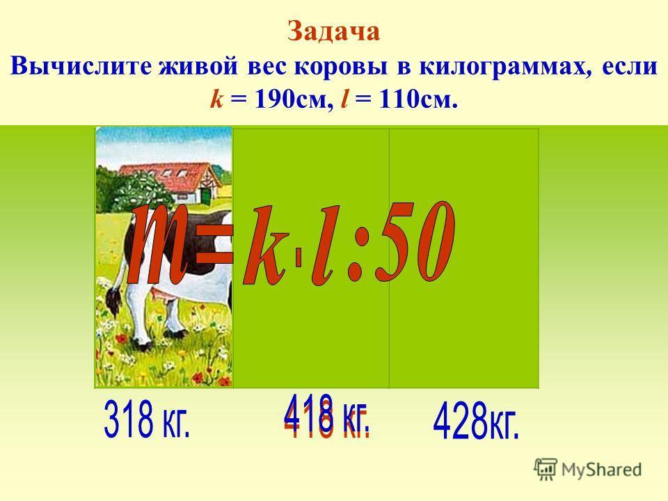 k - обхват туловища за передними лопатками в см. l – расстояние от передней лопатки до корня хвоста в см. Живой вес коровы определяется (приближённо) по формуле: Выход мяса для коровы средней упитанности – 47% (44% - ниже средней, 39% - тощак)