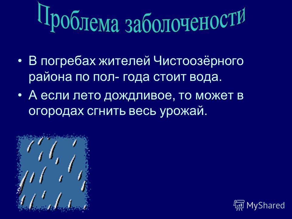 В погребах жителей Чистоозёрного района по пол- года стоит вода. А если лето дождливое, то может в огородах сгнить весь урожай.