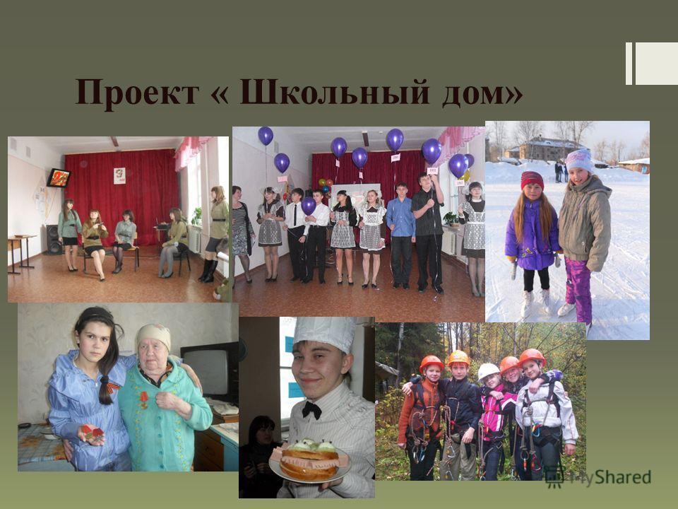 Проект « Школьный дом»