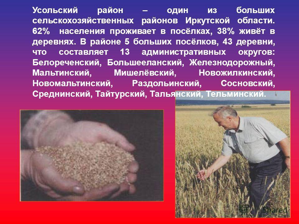 Усольский район – один из больших сельскохозяйственных районов Иркутской области. 62% населения проживает в посёлках, 38% живёт в деревнях. В районе 5 больших посёлков, 43 деревни, что составляет 13 административных округов: Белореченский, Большеелан