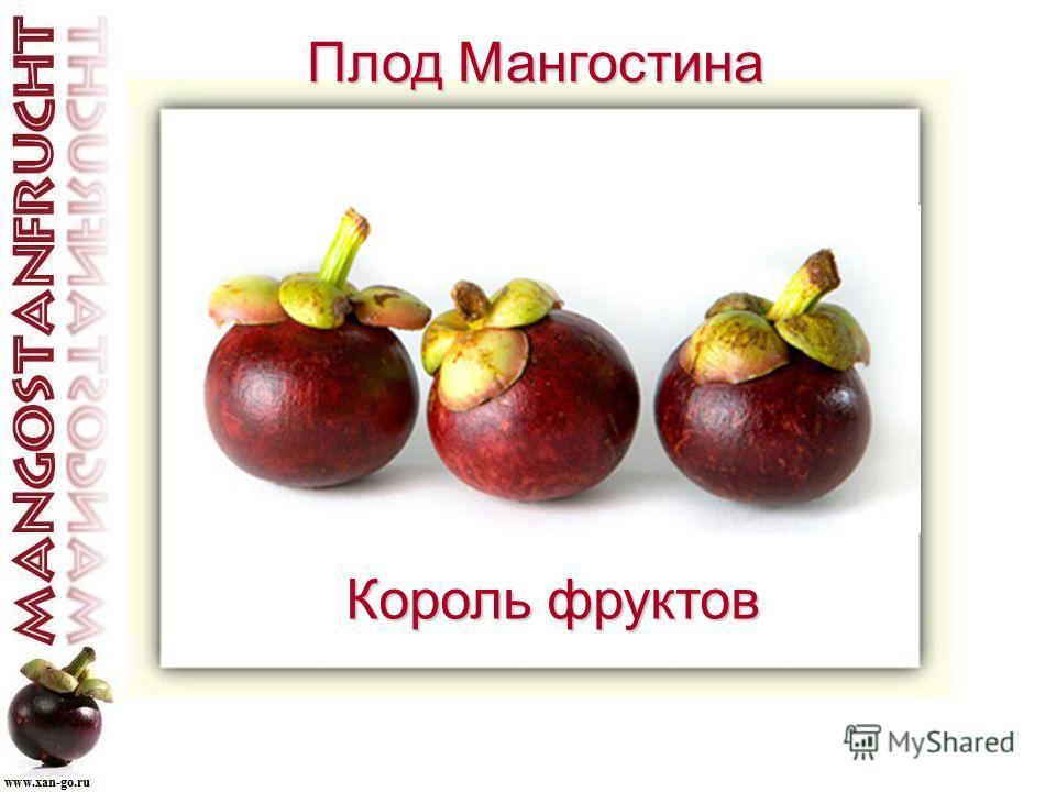 Плод Мангостина Плод Мангостина Король фруктов
