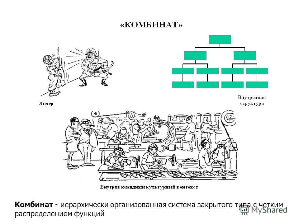 Комбинат - иерархически организованная система закрытого типа с четким распределением функций