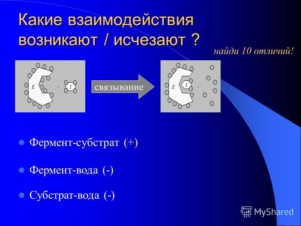 Какие взаимодействия возникают / исчезают ? Фермент-субстрат (+) связывание найди 10 отличий! Фермент-вода (-) Субстрат-вода (-)