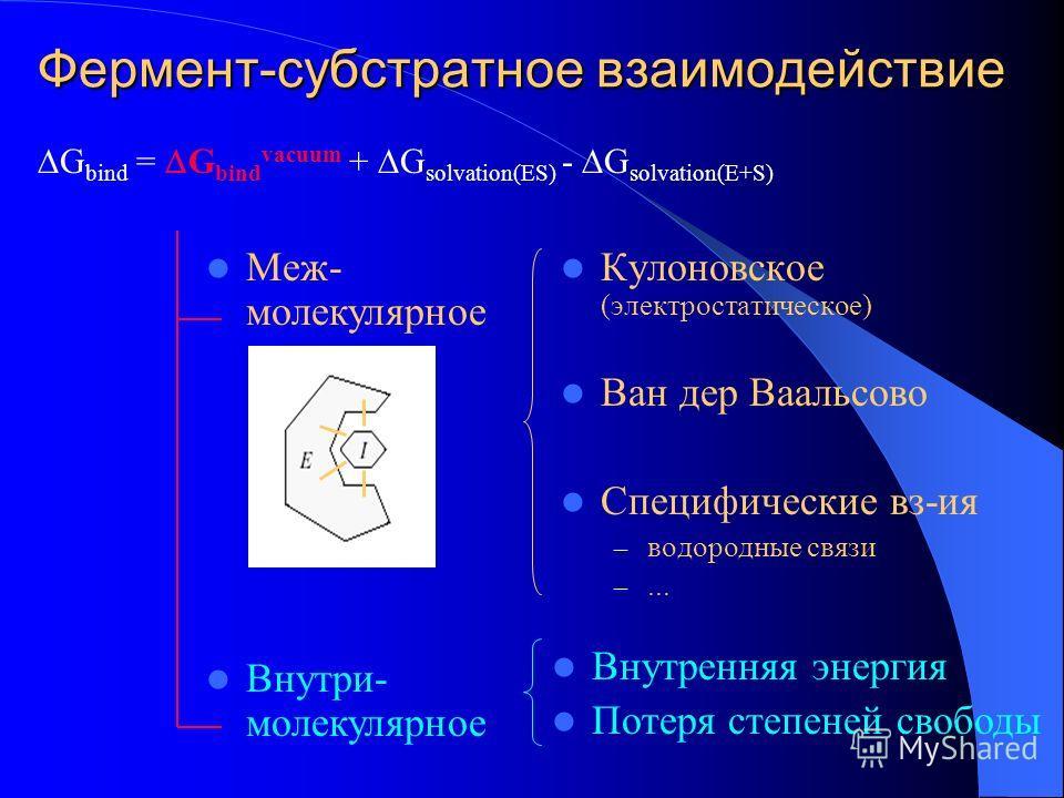 Фермент-субстратное взаимодействие Кулоновское (электростатическое) Ван дер Ваальсово Специфические вз-ия – водородные связи –... G bind = G bind vacuum + G solvation(ES) - G solvation(E+S) Меж- молекулярное Внутри- молекулярное Внутренняя энергия По