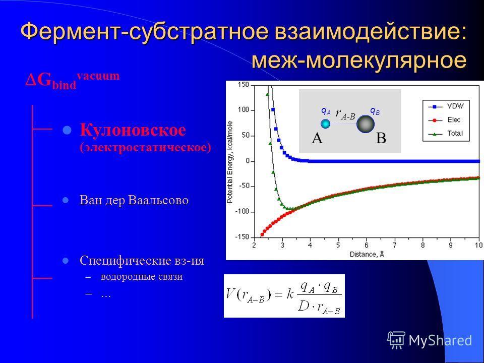 Фермент-субстратное взаимодействие: меж-молекулярное Кулоновское (электростатическое) Ван дер Ваальсово Специфические вз-ия – водородные связи –... G bind vacuum R ij qBqB qAqA АВ r A-B