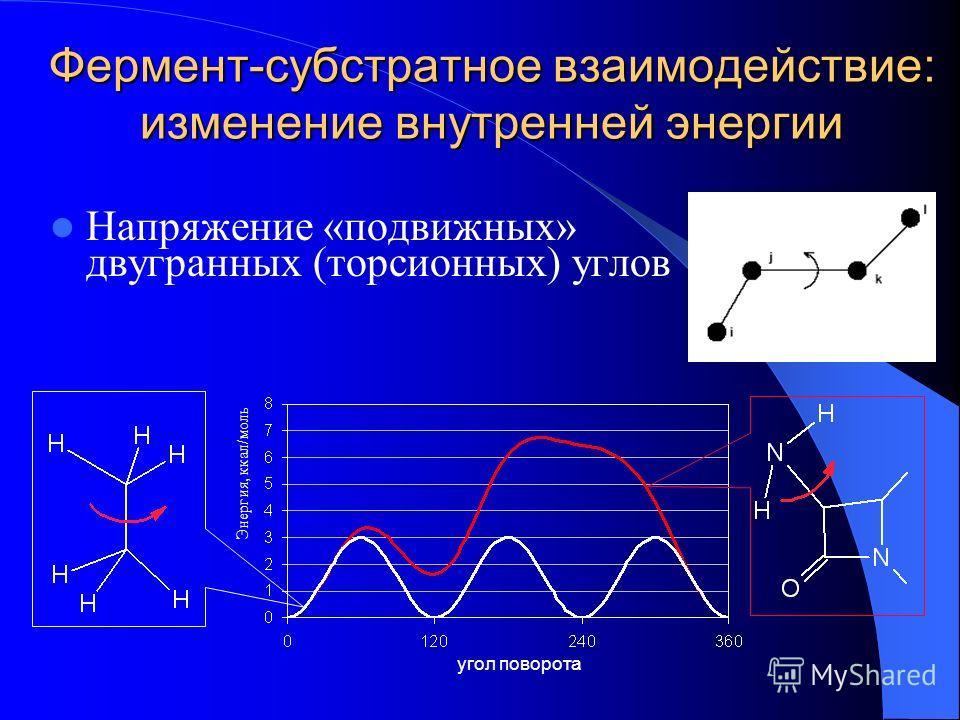 Фермент-субстратное взаимодействие: изменение внутренней энергии Напряжение «подвижных» двугранных (торсионных) углов Энергия, ккал/моль угол поворота