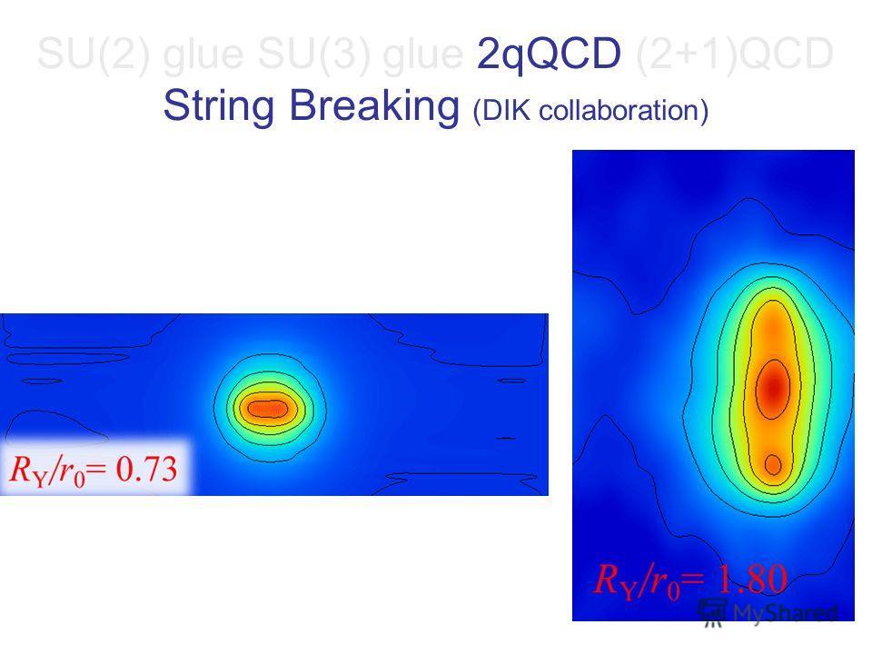 SU(2) glue SU(3) glue 2qQCD (2+1)QCD String Breaking (DIK collaboration)