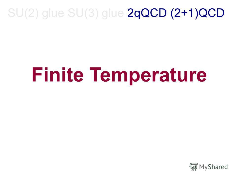 SU(2) glue SU(3) glue 2qQCD (2+1)QCD Finite Temperature