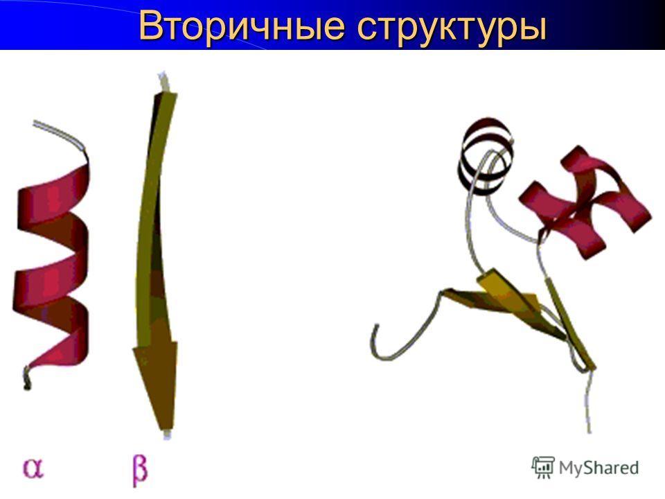 Вторичные структуры