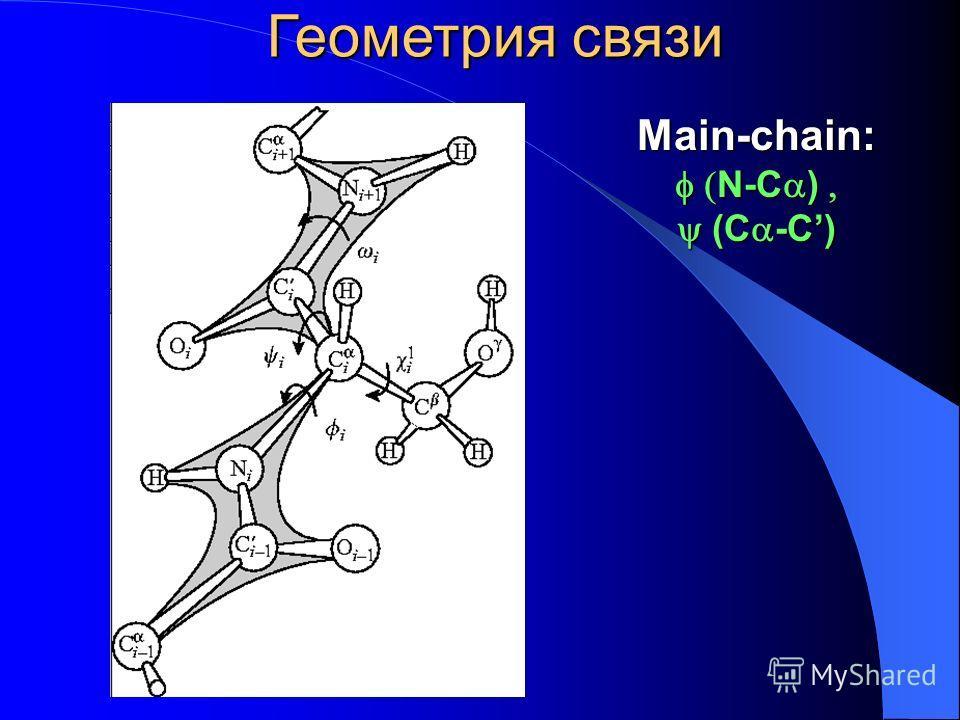 Main-chain: N-C ) N-C ) (C -C) (C -C) Геометрия связи
