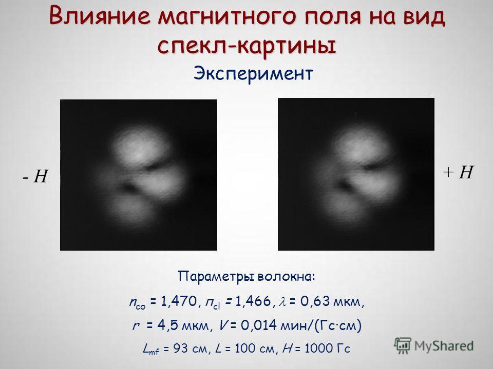 Влияние магнитного поля на вид спекл-картины Эксперимент Параметры волокна: n со = 1,470, п сl = 1,466, = 0,63 мкм, r = 4,5 мкм, V = 0,014 мин/(Гс·см) L mf = 93 см, L = 100 см, H = 1000 Гс - H + H